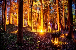 Vienkoču parkā norisinājās Uguns Nakts, kura mērķis ir vienu īso rudens dienu padarīt ilgāk gaišu, dot iespēju uzlādēt sevi ar sveču gaismu un siltumu 10