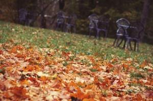 Gulbenē un tās apkārtnē rudens krāšņi izrotājis dabu, ļaujot ikvienam izbaudīt pasakainas ainavas 17