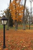 Gulbenē un tās apkārtnē rudens krāšņi izrotājis dabu, ļaujot ikvienam izbaudīt pasakainas ainavas 20