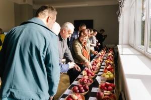Jau astoto gadu Latvijas sulīgākais festivāls Dobelē pulcē novada un apkārtnes mājražotājus, stādaudzētājus, augļkopjus un interesentus 5