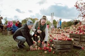 Jau astoto gadu Latvijas sulīgākais festivāls Dobelē pulcē novada un apkārtnes mājražotājus, stādaudzētājus, augļkopjus un interesentus 24