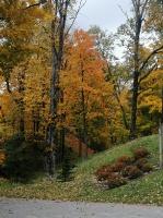 Madona krāšņi pārklājas rudens zeltā un ikvienu priecē ar pasakainām gadalaiku spelēm dabā
