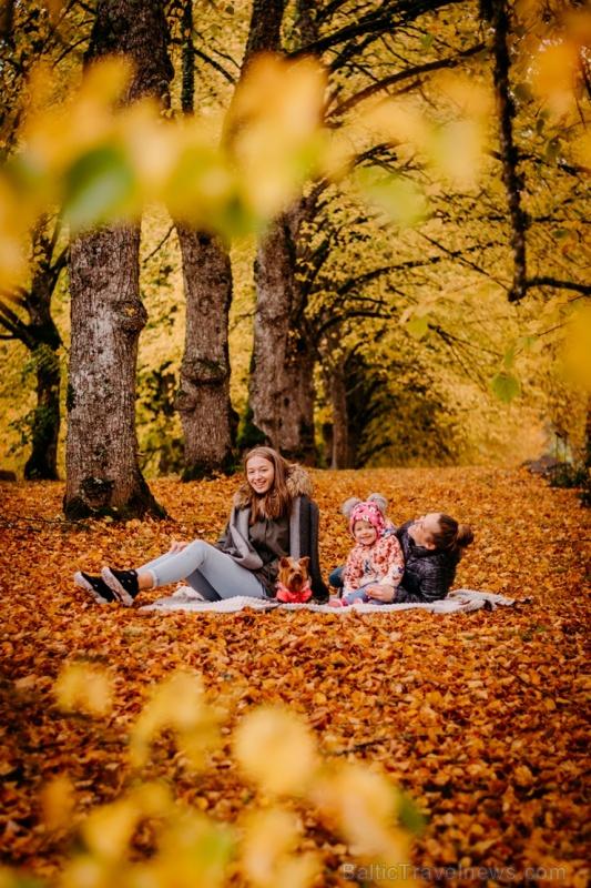 Tukumā rudenī valda īpaša noskaņa un krāsu spēles 267894