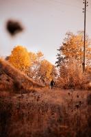 Tukumā rudenī valda īpaša noskaņa un krāsu spēles 4