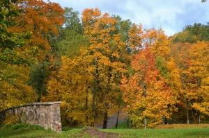 Krāslavas pilsētā valda rudenīgi silta noskaņa 9