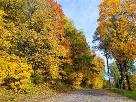 Krāslavas pilsētā valda rudenīgi silta noskaņa 13