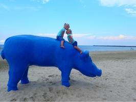 Pastaigu pa laipām Rojas pludmalē