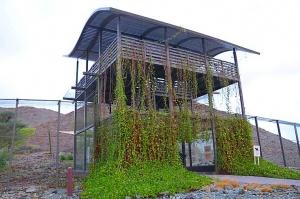 Travelnews.lv apmeklē dabas aizsardzības centru «Al Hefaiyah Mountain Conservation Centre». Atbalsta: VisitSharjah.com un Novatours.lv 1