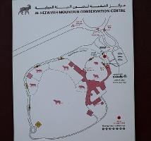 Travelnews.lv apmeklē dabas aizsardzības centru «Al Hefaiyah Mountain Conservation Centre». Atbalsta: VisitSharjah.com un Novatours.lv 3