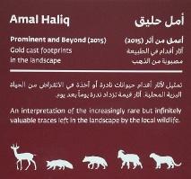 Travelnews.lv apmeklē dabas aizsardzības centru «Al Hefaiyah Mountain Conservation Centre». Atbalsta: VisitSharjah.com un Novatours.lv 17