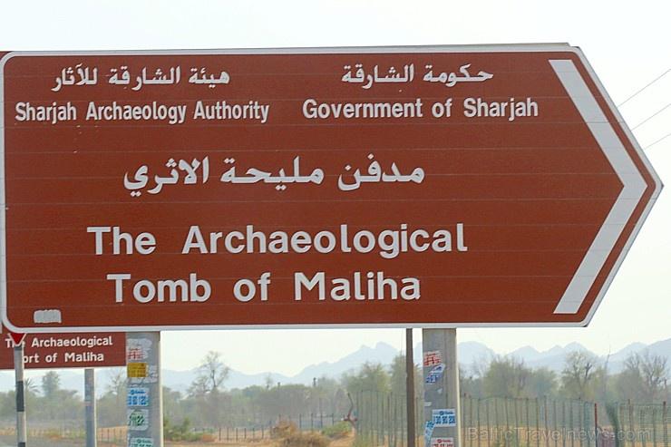 Travelnews.lv apmeklē arheoloģisko centru «Mleiha Archaeological Centre» Malehā. Atbalsta: VisitSharjah.com un Novatours.lv
