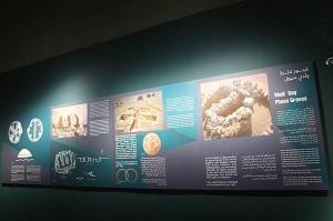 Travelnews.lv apmeklē arheoloģisko centru «Mleiha Archaeological Centre» Malehā. Atbalsta: VisitSharjah.com un Novatours.lv 17