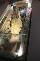 Travelnews.lv apmeklē arheoloģisko centru «Mleiha Archaeological Centre» Malehā. Atbalsta: VisitSharjah.com un Novatours.lv 24