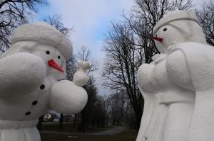 Cauri deviņām Latvijas kaprīzajām ziemām Dobeles dižie sniegavīri ir veiksmīgi atnākuši līdz savam desmitajam saietam 15