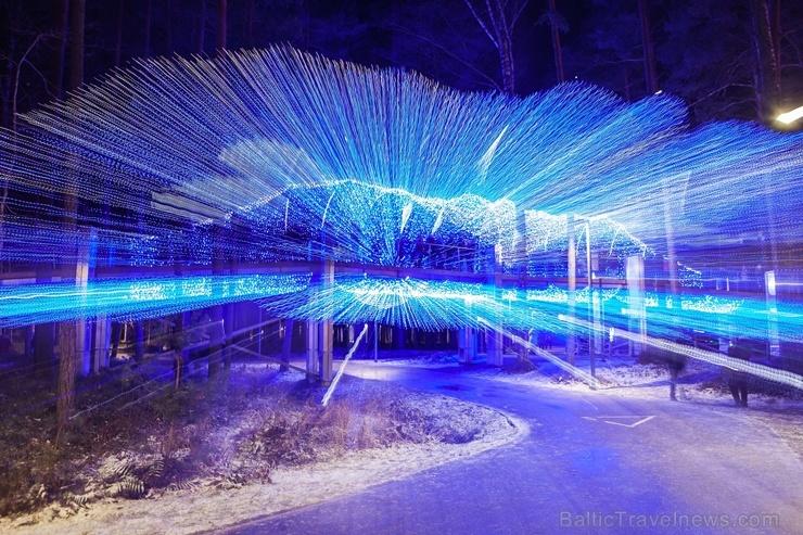 Jau trešo gadu Jūrmalā, Dzintaru mežaparkā, iemirdzējušās gaismas skulptūras un dekori, veidoti no tūkstošiem LED lampiņu virtenēm