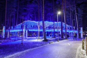 Jau trešo gadu Jūrmalā, Dzintaru mežaparkā, iemirdzējušās gaismas skulptūras un dekori, veidoti no tūkstošiem LED lampiņu virtenēm 1
