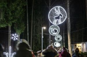 Jau trešo gadu Jūrmalā, Dzintaru mežaparkā, iemirdzējušās gaismas skulptūras un dekori, veidoti no tūkstošiem LED lampiņu virtenēm 3