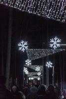 Jau trešo gadu Jūrmalā, Dzintaru mežaparkā, iemirdzējušās gaismas skulptūras un dekori, veidoti no tūkstošiem LED lampiņu virtenēm 4