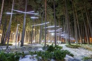Jau trešo gadu Jūrmalā, Dzintaru mežaparkā, iemirdzējušās gaismas skulptūras un dekori, veidoti no tūkstošiem LED lampiņu virtenēm 6