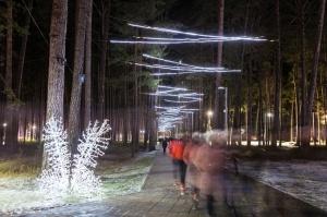 Jau trešo gadu Jūrmalā, Dzintaru mežaparkā, iemirdzējušās gaismas skulptūras un dekori, veidoti no tūkstošiem LED lampiņu virtenēm 9