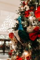 Viesnīca Grand Hotel Kempinski turpinot tradīciju pulcē rīdziniekus uz svinīgo Ziemassvētku egles iedegšanas ceremoniju 42