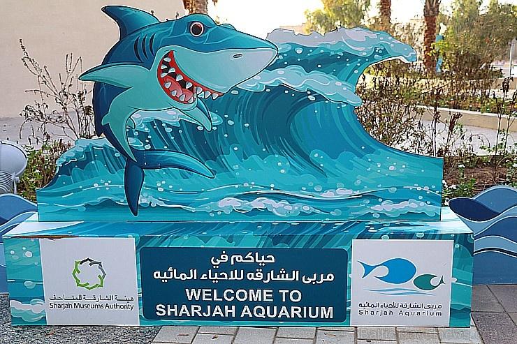 Travelnews.lv apmeklē zemūdens pasauli «Sharjah Aq