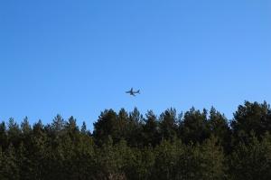 Ragakāpas dabas parkā Jūrmalā mostas pavasaris 11