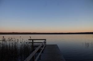 Gulbenes novadā notverti saulaini pavasara mirkļi 16