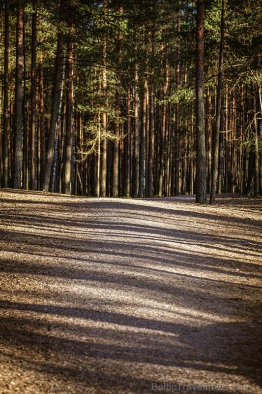 Lielo Ķemeru tīreli saullēktā pielej silti gaismas stari