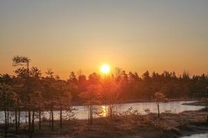 Lielo Ķemeru tīreli saullēktā pielej silti gaismas stari 1