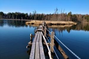 Dobeles pusē, ievērojot valstī noteiktos drošības nosacījumus, var baudīt pavasarīgas pastaigas 1