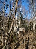 Dobeles pusē, ievērojot valstī noteiktos drošības nosacījumus, var baudīt pavasarīgas pastaigas 2
