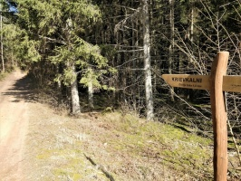 Dobeles pusē, ievērojot valstī noteiktos drošības nosacījumus, var baudīt pavasarīgas pastaigas 8