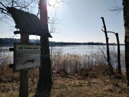 Dobeles pusē, ievērojot valstī noteiktos drošības nosacījumus, var baudīt pavasarīgas pastaigas 24