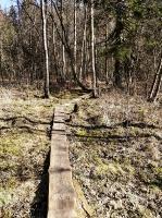 Dobeles pusē, ievērojot valstī noteiktos drošības nosacījumus, var baudīt pavasarīgas pastaigas 27