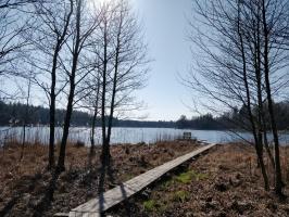Dobeles pusē, ievērojot valstī noteiktos drošības nosacījumus, var baudīt pavasarīgas pastaigas 29