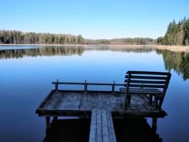 Dobeles pusē, ievērojot valstī noteiktos drošības nosacījumus, var baudīt pavasarīgas pastaigas 38