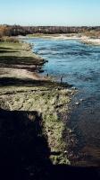 Kuldīgā plauks pavasaris un virs Ventas rumbas, mugurām zaigojot, lido zivis 19