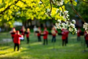 Rēzeknes pagalmos skan muzikāli pārsteigumi pilsētas iedzīvotājiem un viesiem 30