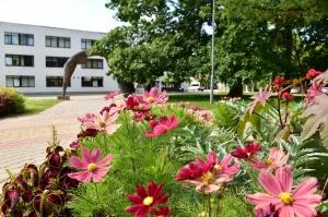 Valmieru vasaras pilnbriedā izdaiļo krāšņākie ziedi 12