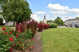 Valmieru vasaras pilnbriedā izdaiļo krāšņākie ziedi 13