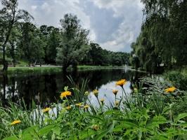 Valmieru vasaras pilnbriedā izdaiļo krāšņākie ziedi 19