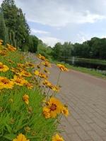 Valmieru vasaras pilnbriedā izdaiļo krāšņākie ziedi 22