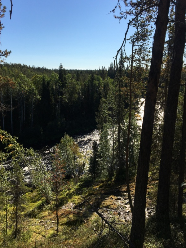 Ik pa brīdim taka izvijas upes krastos, paverot izcilus krāču skatus 291225