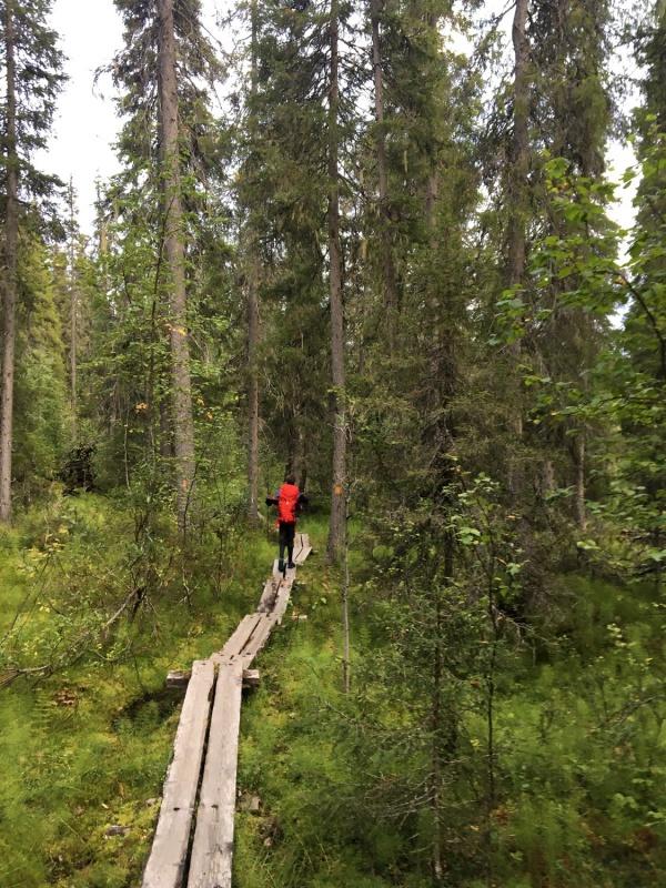 Kopā ar @suuntopulksteni.lv un @kidshike Travelnews.lv pieveic 102km populārākajā Somijas garo pārgājienu takā - Karhunkierros 291248