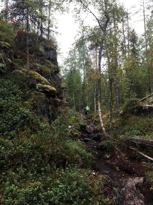 Kopā ar @suuntopulksteni.lv un @kidshike Travelnews.lv pieveic 102km populārākajā Somijas garo pārgājienu takā - Karhunkierros 291253