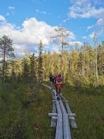 Purvainās vietās izliktas stingras koka laipas 18