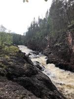 Kiutaköngäs krāces (ūdenskritumu) savā laikā bija noskatījuši elektrības iegūšanas industrijas pārstāvji, bet dabas draugiem, to izdevās nosargāt 27