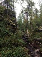 Kopā ar @suuntopulksteni.lv un @kidshike Travelnews.lv pieveic 102km populārākajā Somijas garo pārgājienu takā - Karhunkierros 36