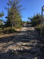 Kopā ar @suuntopulksteni.lv un @kidshike Travelnews.lv pieveic 102km populārākajā Somijas garo pārgājienu takā - Karhunkierros 53